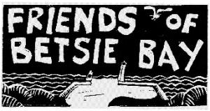 friends of betsie bay logo
